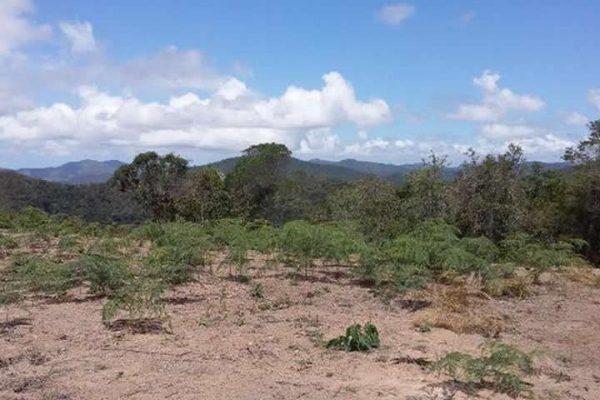 Chácara 1.500m² Plano Represa Rio Bonito, Sta. Ma Jetibá ES